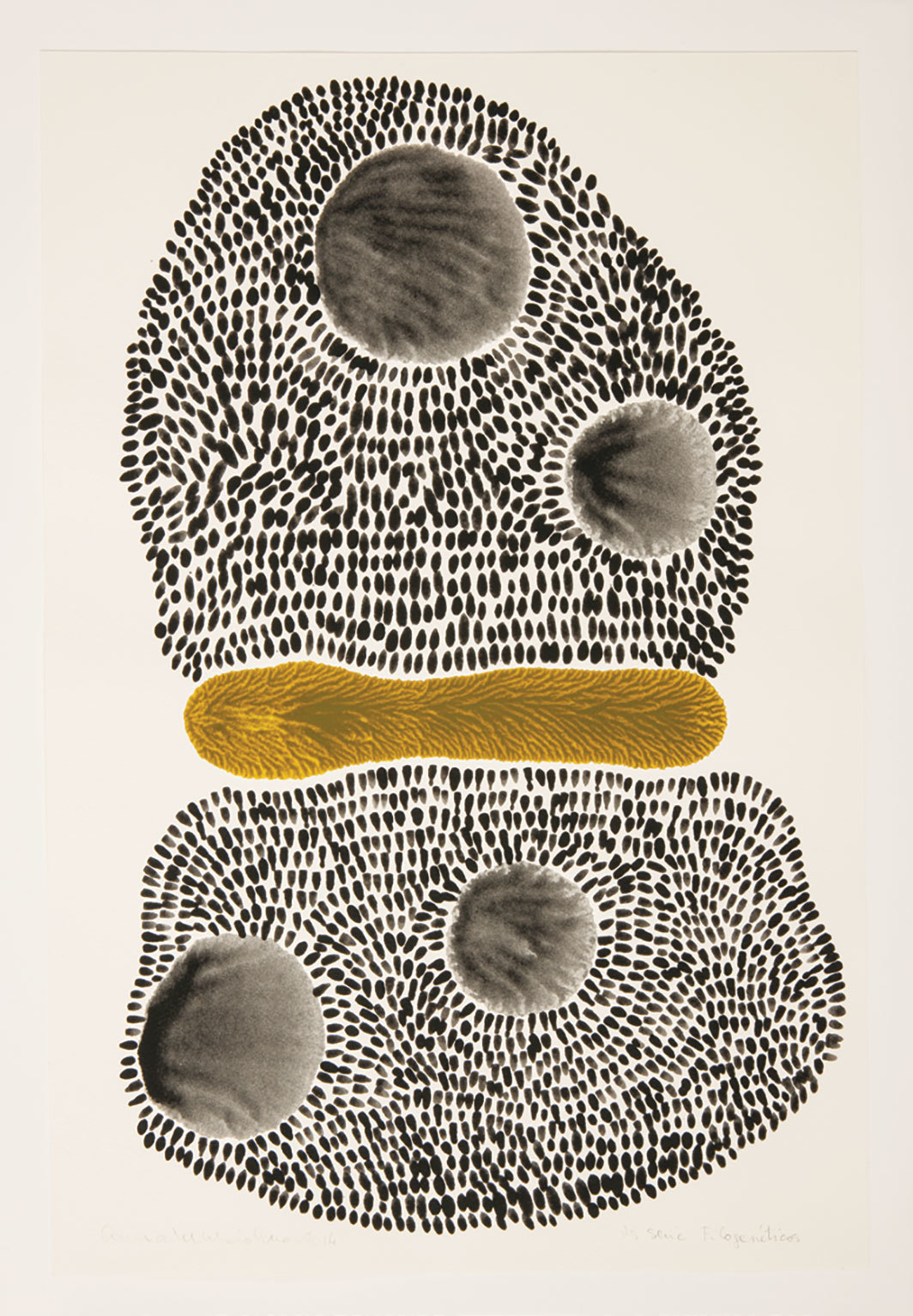 "Anna Maria Maiolino, Untitled, 2014, acrylic ink on paper, 17 7⁄8 × 12"". From the series ""Filogenéticos"" (Phylogenetics)."