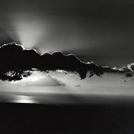 Brett Weston, untitled, ca.1985, a gift from the Christian Keesee Collection to the Mary and Leigh Block Museum of Art. Photo: Brett Weston Archive.