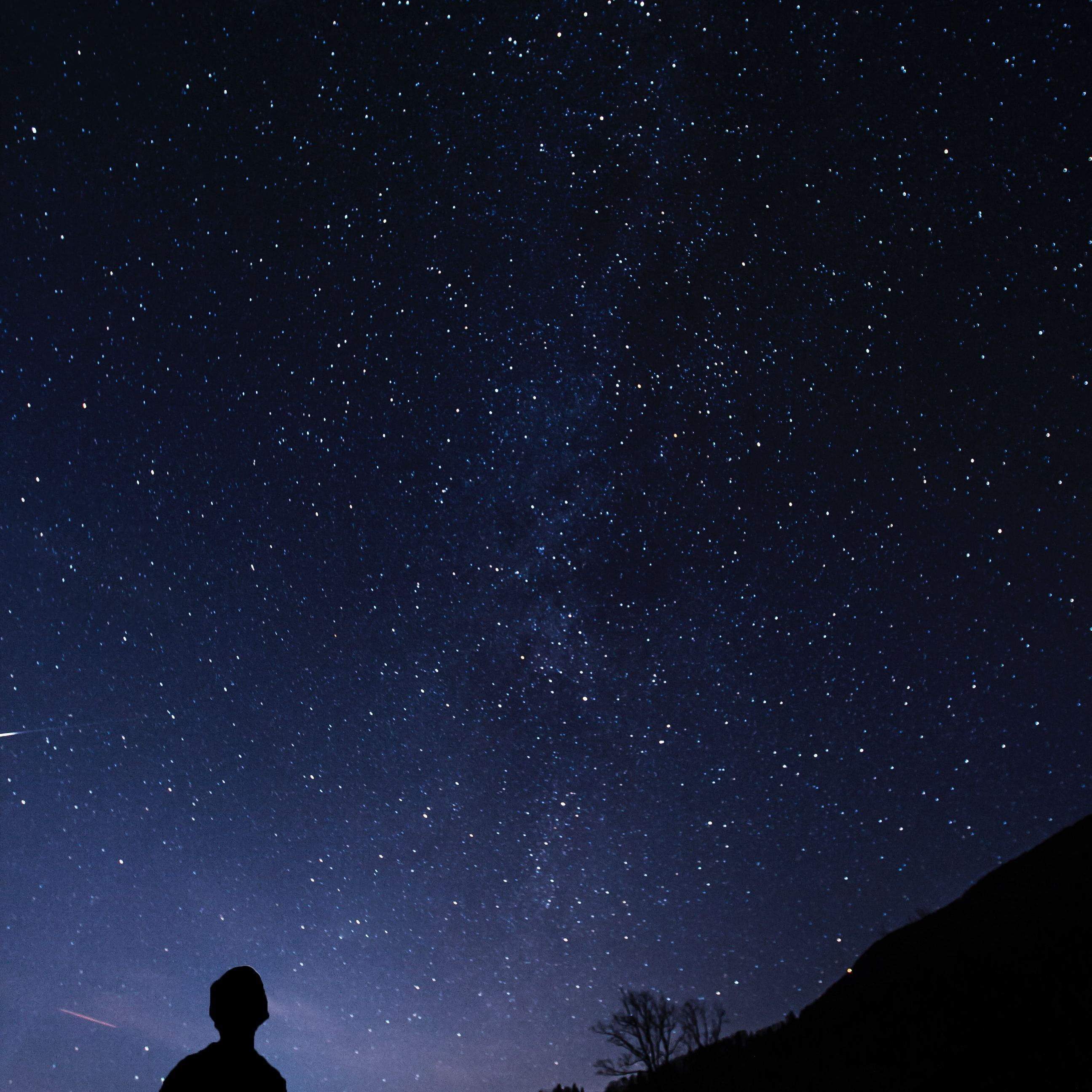 A man looking up into space. Photo: Klemen Vrankar/Unsplash.