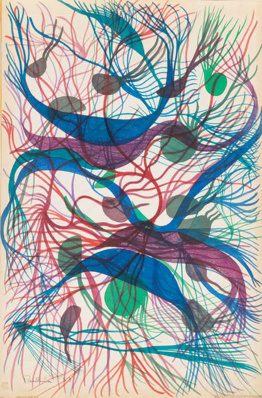"Paulina Peavy, Noah, Legume Genesis, 1953, watercolor on paper, 17 1⁄2 × 12""."