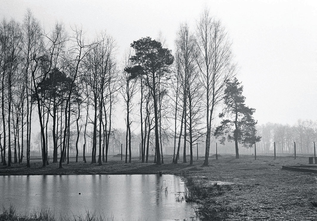 "Santu Mofokeng, Lake Once Filled with the Ashes of the Cremated, KZ2–Auschwitz, 1997, gelatin silver print. From the series ""Landscapes of Trauma,"" 1997–2004. © Santu Mofokeng Foundation/Lunetta Bartz, MAKER, Johannesburg."