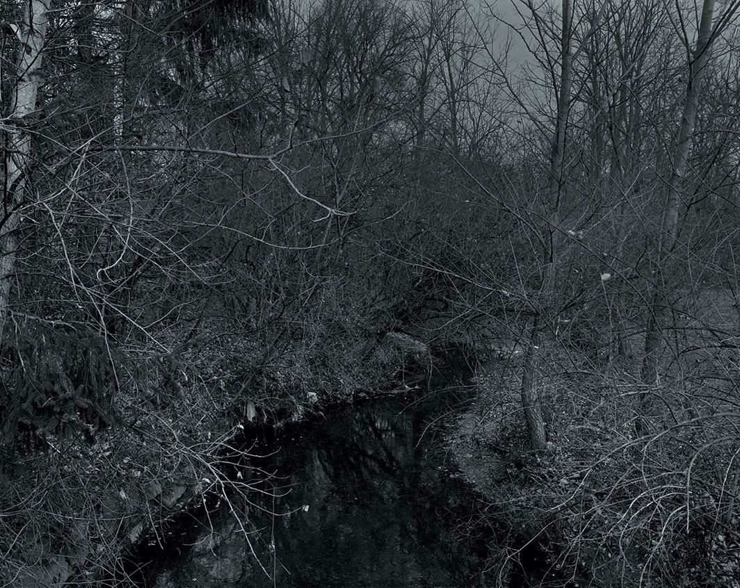 "Dawoud Bey, Untitled #19 (Creek and Trees), 2017, gelatin silver print, 44 × 55"". From the series ""Night Coming Tenderly, Black,"" 2017."