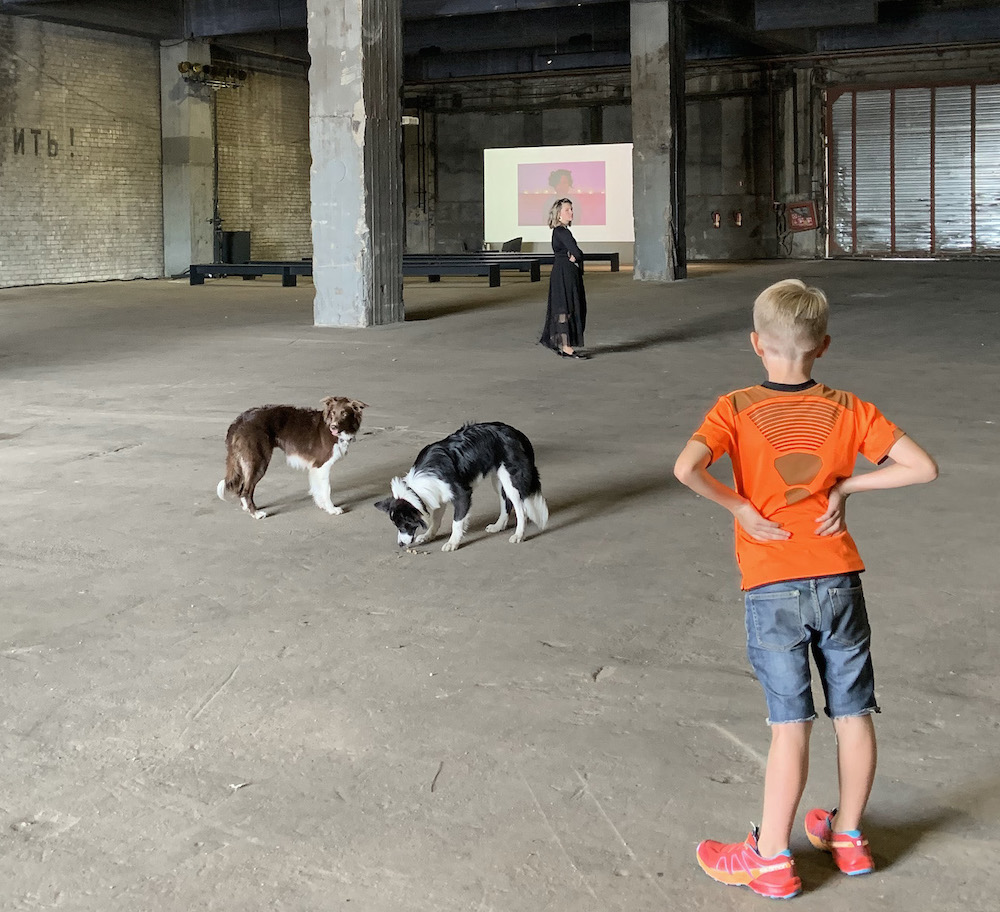 Tarkovskian tableau: dog actors to be featured in the biennial's film.