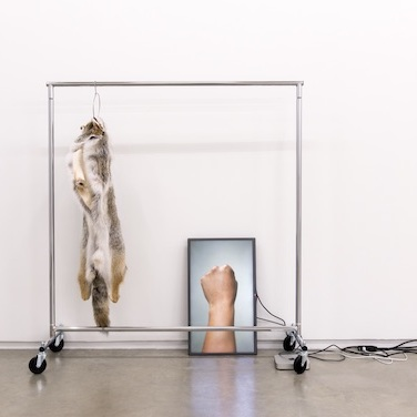 "Duane Linklater, The place I seek to go, 2014, coyote fur, garment rack, hanger, flatscreen TV, Mac Mini, HD video loop, cables, 132 x 66 x 20"". Photo: SITE Photography. Collection of Remai Modern, Saskatoon. Courtesy Catriona Jeffries, Vancouver."