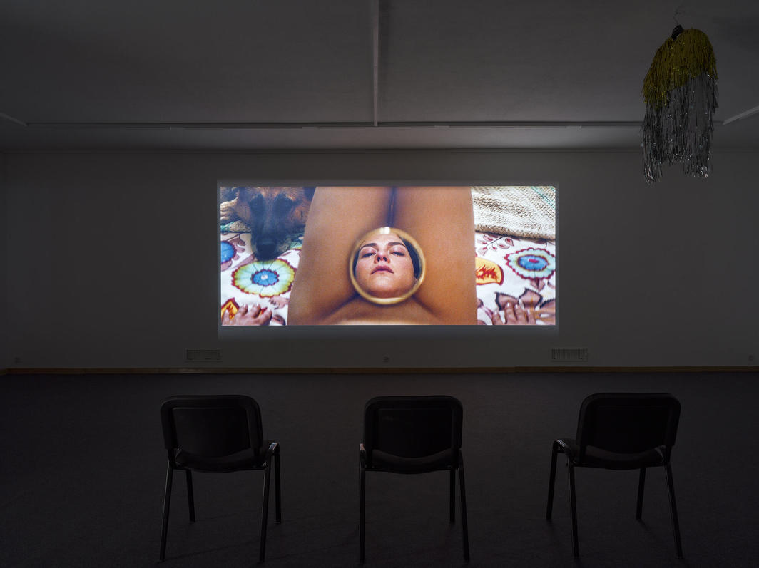 Puppies Puppies (Jade Kuriki Olivo), Una Mujer Fantástica (A Fantastic Woman), 2019, HD video projection, color, sound, LED light box, tinted Toyota Corolla window, custom jacket, polished metal, mirror, public advertisement, dimensions variable.